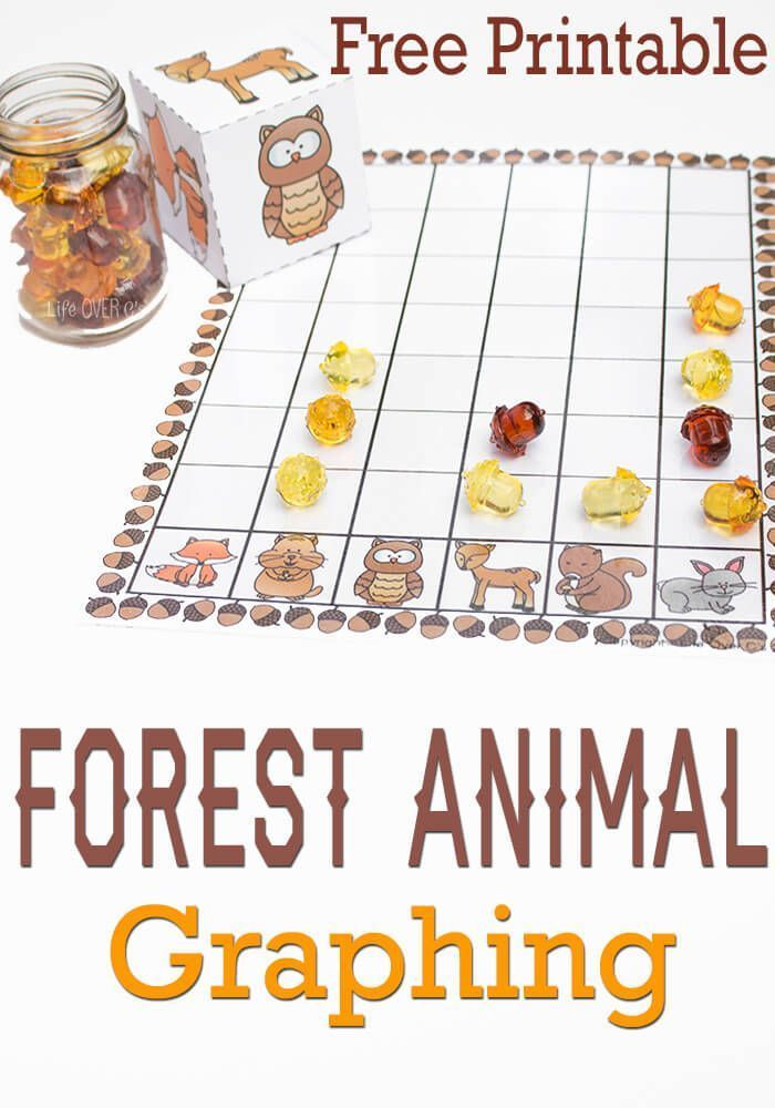 Free Forest Animal Graphing Printable! Perfect for learning about picture graphs and probability. Great tips for extending the activity!
