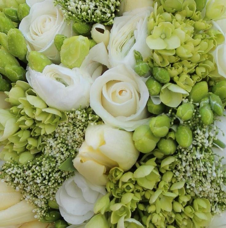 White freesia, Akito rose, ranuculus and trachelium close-up
