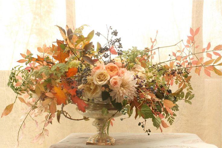 Best ariella chezar images on pinterest beautiful