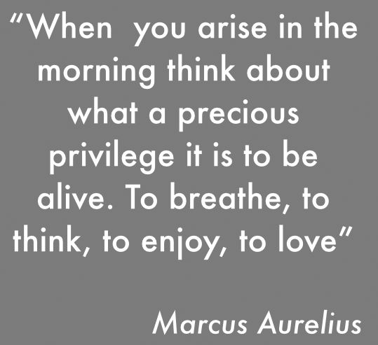 178 Best Philosophies & Quotes Images On Pinterest