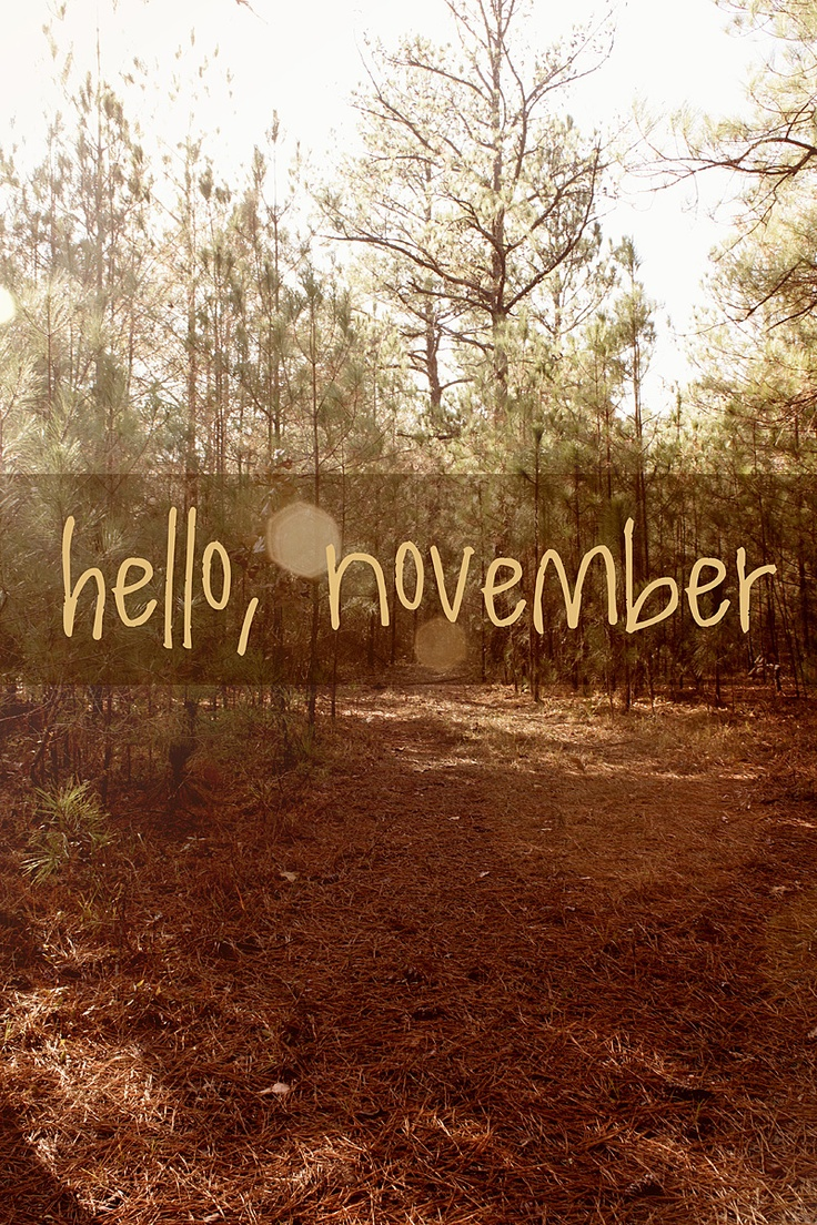 hello, november | Quotes | Pinterest