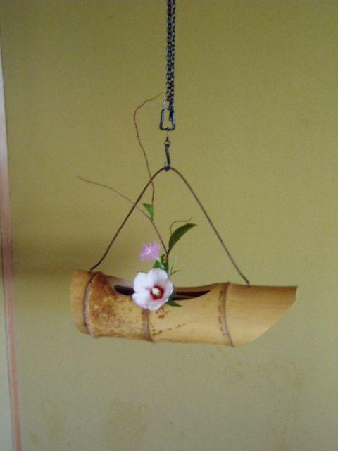 夏の茶花 : 茶室の花