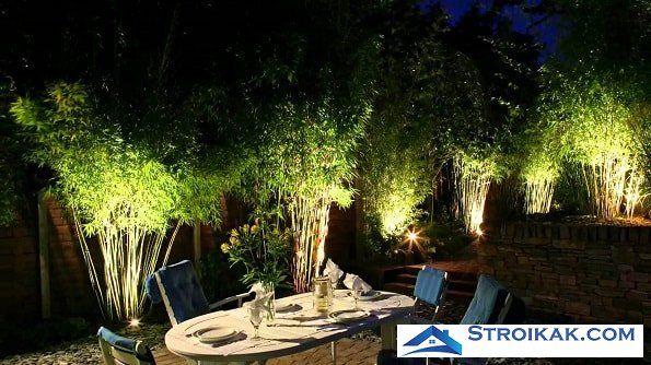 Вертикальная подсветка кустов в саду