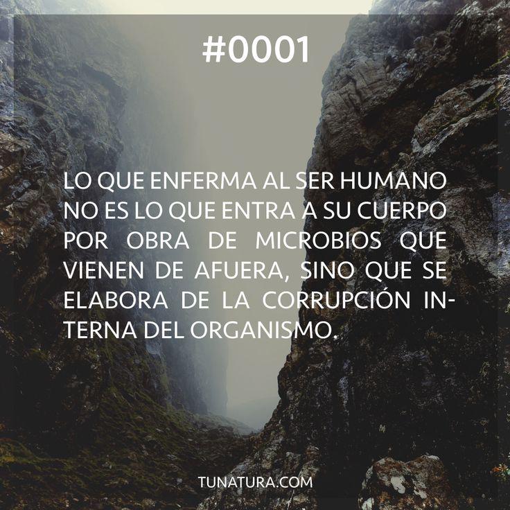 Debemos enfocarnos en regular el desarreglo interno del #organismo. #Salud tunatura.com