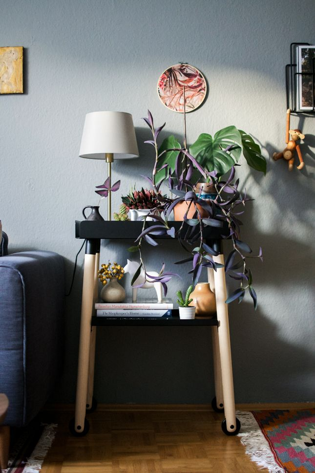 Urban Jungle Bloggers: the #plantshelfie by @igorjosif