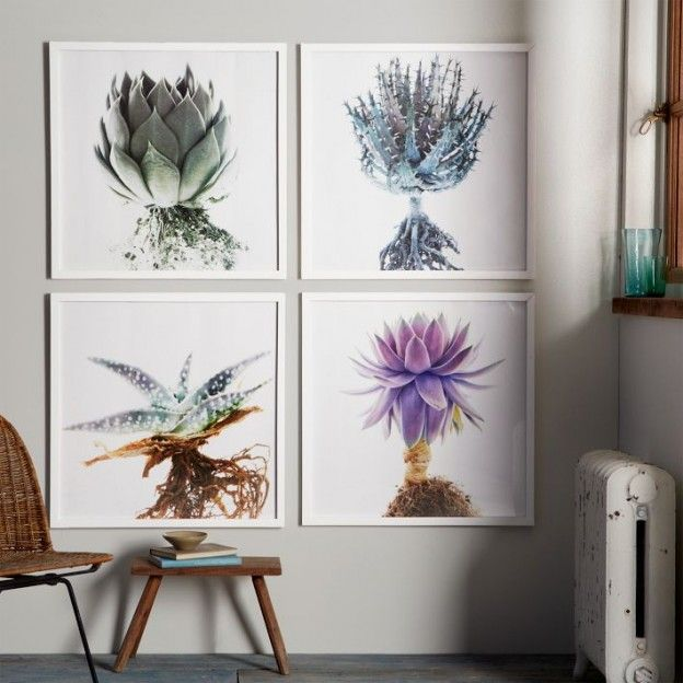 Stunning succulent wall art photography