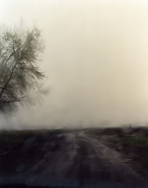 Todd Hido's A Road Divided