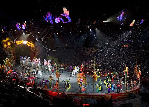 116 Best Images About The Happiest Place On Earth On Pinterest Blue Man Group Circus Circus