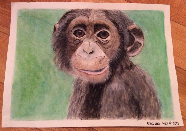 Monkey painting - using watercolour By: Anna Fan