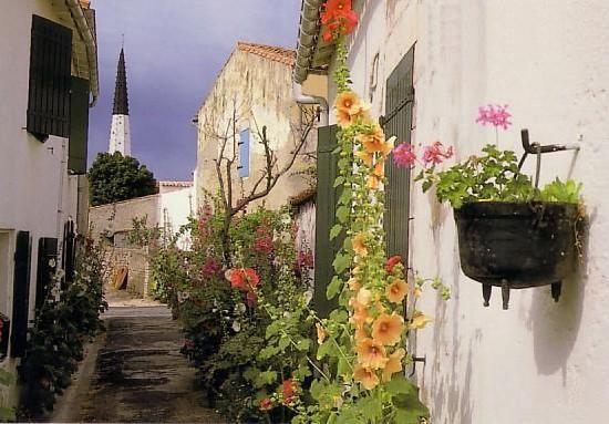 Visiter Ars-en-Re : Tourisme à Ars-en-Re - TripAdvisor Plus beaux village de la France