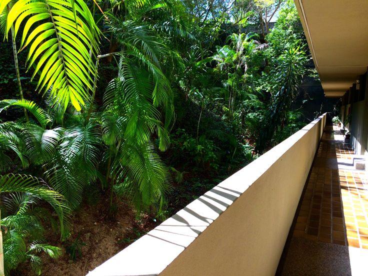 Pasillo que comunica los apartamentos dentro del edificio Madrigal en Colinas de Valle Arriba