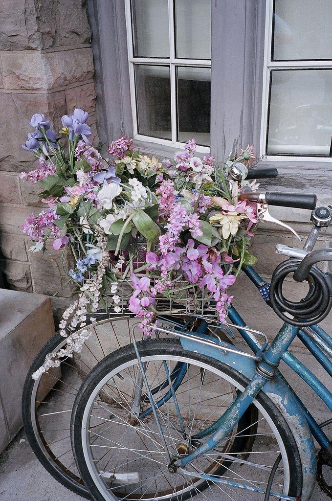 Die besten 25 rosa fahrrad ideen auf pinterest for Fahrrad minimalistisch