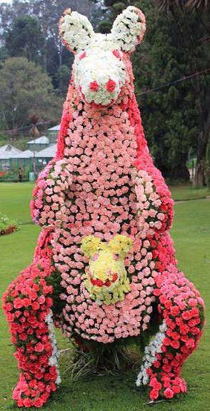 Flower Creation