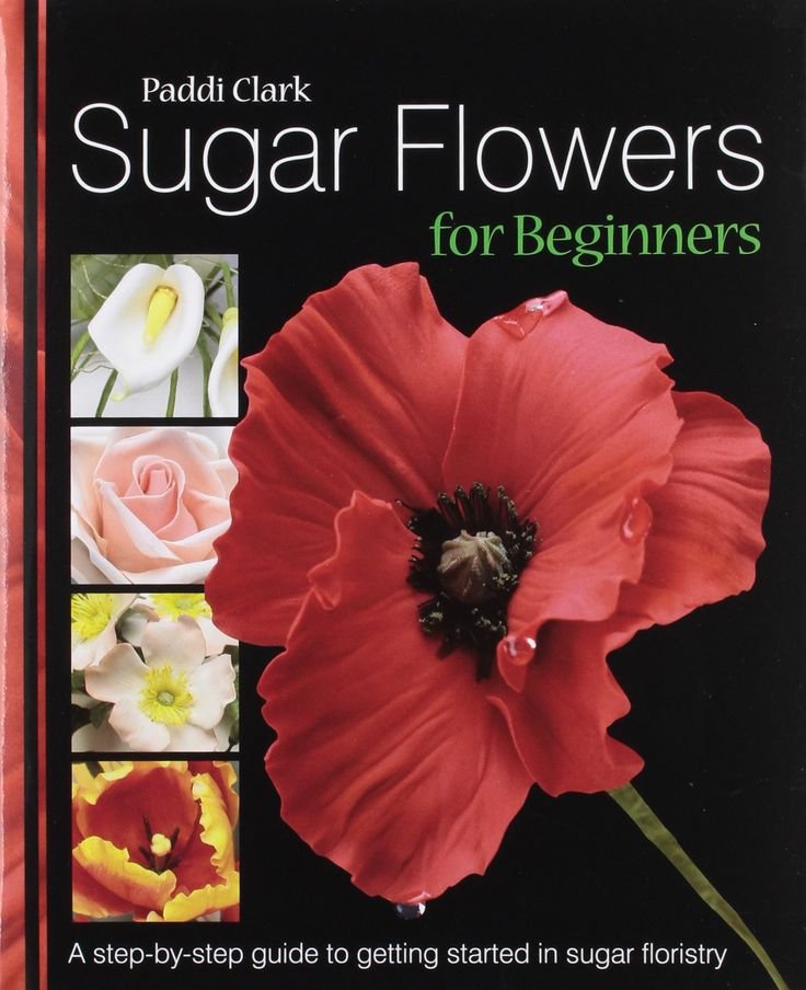 Cake Making For Beginners Recipe Books