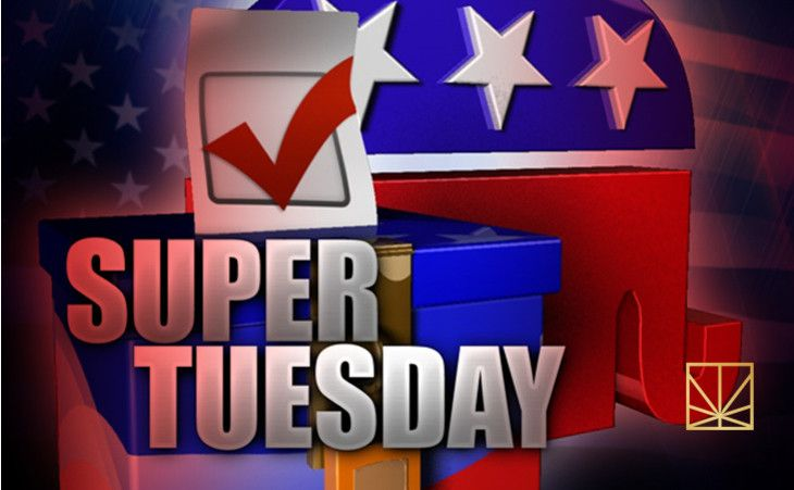 Mar 2: COME AT ME: POLL FEVER WILL CONSUME EVERYTHING. It's no big news that cannabis's future could be in the balance of the 2016 election, but the Super Tuesday poll numbers will be surprising to some now that the dust has settled.