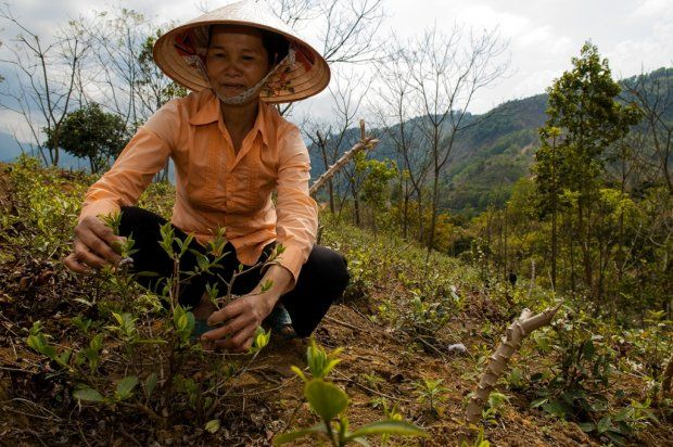 How do we best create long-term impact that matters to smallholder farmers? | CCAFS: CGIAR research program on Climate Change, Agriculture and Food Security