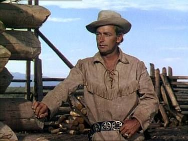 Shane: George Stevens' Classic Western Film based on the short story by Jack Shaefer .Alan Ladd put in a great performance but when you read the book you'll have someone different in mind ( Maybe William Holden or Robert Ryan) I've been reading the book to my students and they loved it.