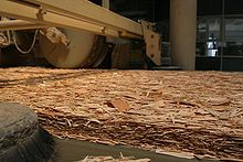 Oriented strand board - in the making