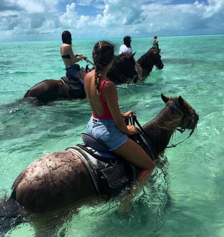 The real seahorse... #TroopsHQ   #travel #adventure #trip #tourist #vacation #travelphotography #instatravel #traveltheworld #instatravelling #instavacation #travelblogger #instapassport #postcardsfromtheworld #traveldeeper  #travelstroke #travelling #trip #traveltheworld #igtravel #getaway #travelblog #instago #travelpics #tourist #wanderer #wanderlust #travelphoto