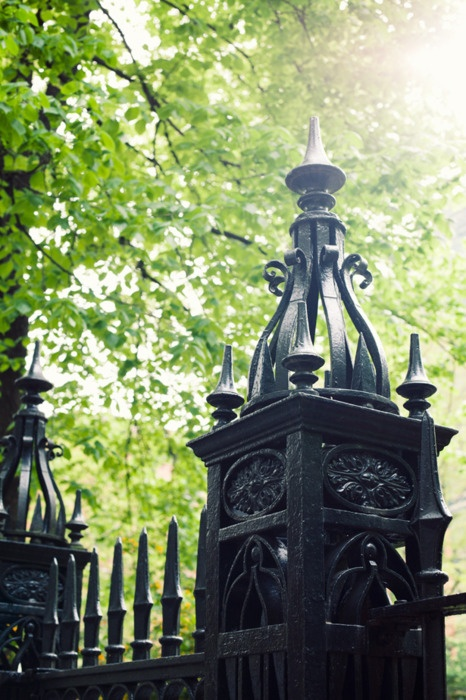 17 Best Images About Iron Gates And Fences On Pinterest