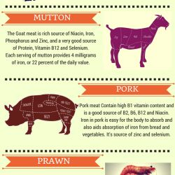 http://visual.ly/meat-contain-beneficial-minerals-our-body