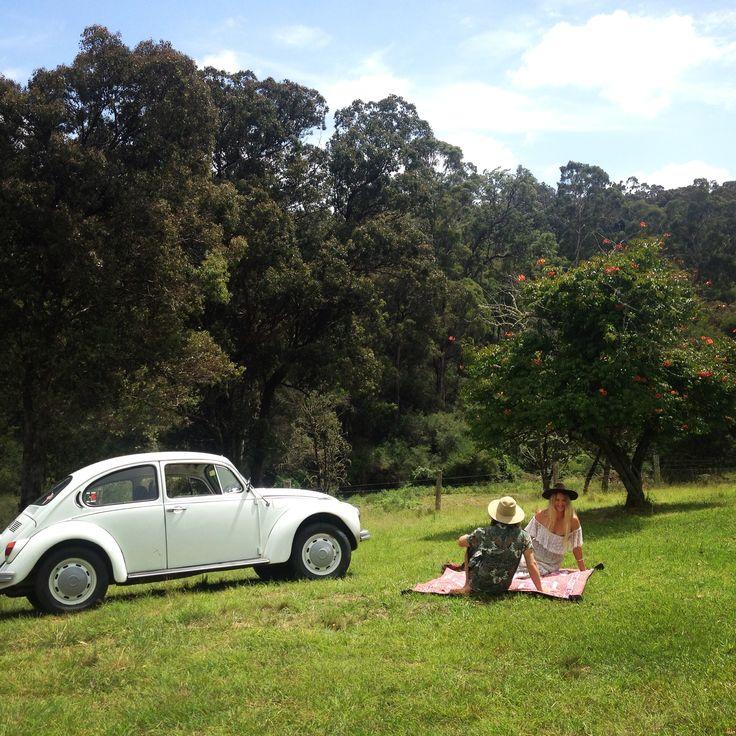 the prefect picnic on green rolling hills ...www.wanderingfolk.net