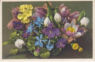 Thor E Gyger Postcard - 2217 Frühlingsblumen. Fleurs printanières, Spring flowers