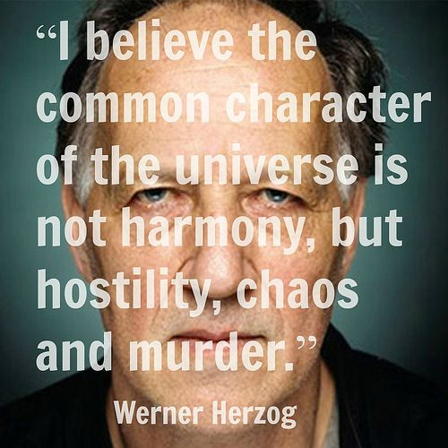 Film Director Quote - Werner Herzog - Movie Director Quote  - #wernerherzog      Photo by Robin Holland  robinholland.com