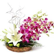 want to send flowers to DELHI same day . Visit here - http://www.giftalove.com/send-flower-to-delhi.html