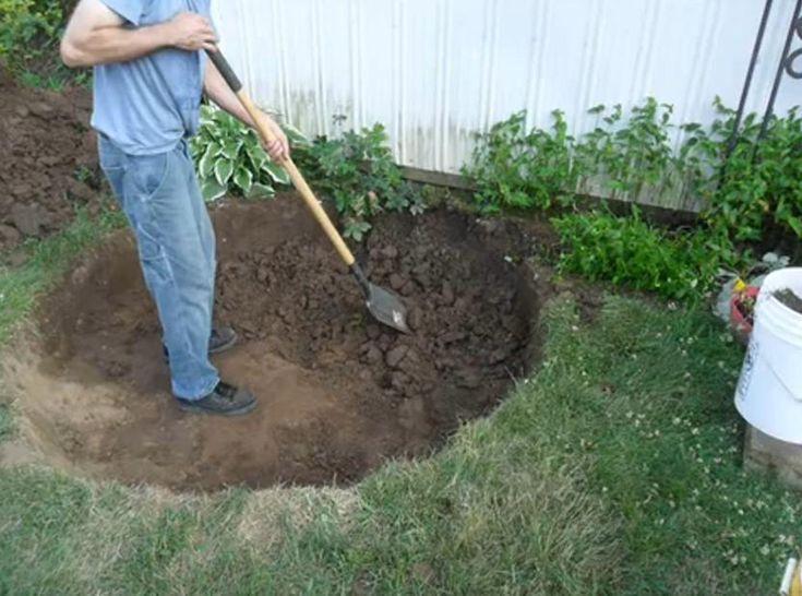 Diy c mo hacer un estanque con una llanta ser ecol gico for Estanque ecologico