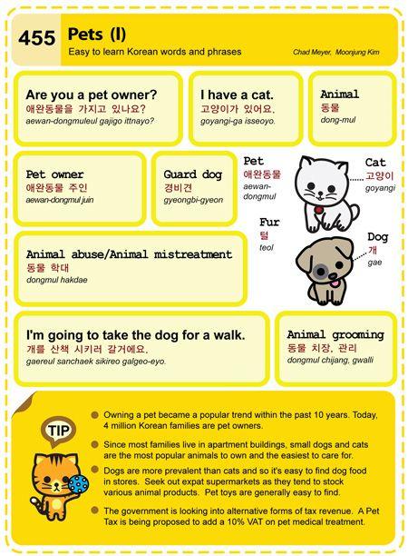 Learn Korean: Pets I