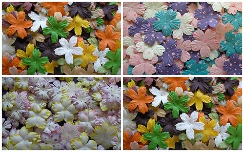 50 or 100 MISS DAISY mulberry paper MIXED FLOWER PACKS exclusive to CRAFTY COW | eBay