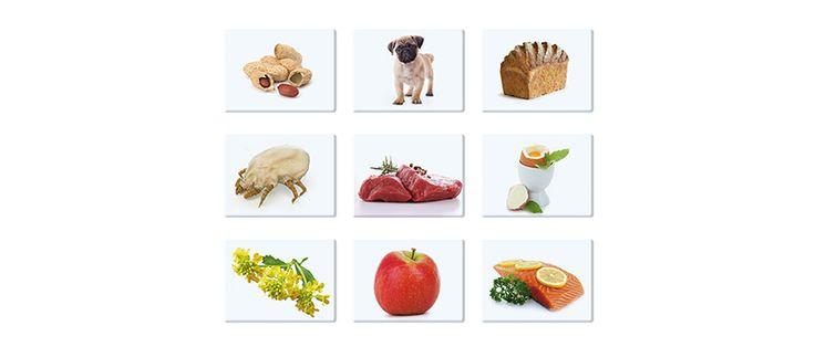 Duży profil alergiczny to test alergiczny, który składa się aż z 54 alergenów. Jest najszerszym testem typu profil na runku Polskim. Służy do diagnostyki z krwi alergii pokarmowych, alergii wziewnych, alergii na jady owadów i alergii środowiskowych (uczulenie na lateks). W jego skład wchodzi 23 alergeny wziewne i 28 alergenów pokarmowych, 2 alergeny jadów owadów i 1 alergen środowiskowy.