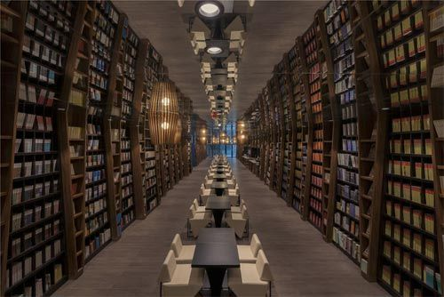 Egalité du prêt en bibliothèque papier et ebook les bibliothécaires satisfaits