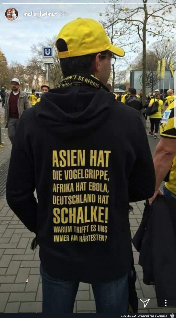 lustiges Bild 'Schalke.jpg'- Eine von 32568 Dateien in der Kategorie 'witzige Bilder' auf FUNPOT.