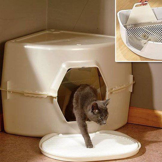 Best Cat Litter Boxes Roundup Cat litter boxes, Therapy