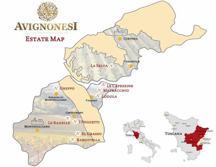 Avignonesi è situata nella DOCG del Vino Nobile in Toscana. Clicca sulla foto sottostante per scoprire il nostro terroir
