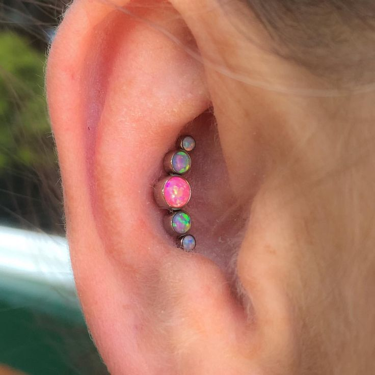 1000 ideas about conch piercings on tragus