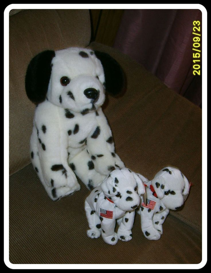 Ty Set of 3 Dalmation Dogs/Beanie Buddy, Beanie Babies - Retired  Collectible #Ty