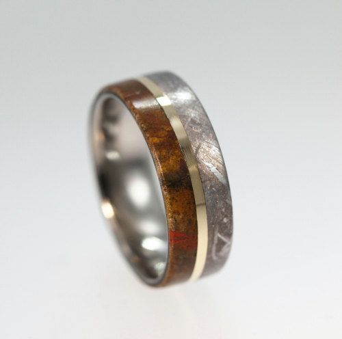 Meteorite Ring Dinosaur Bone Wedding Band With 14k Yellow Gold Pinstripe Anium