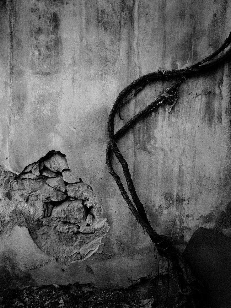 Antigone Kourakou: The Shadow Of Things | MONOVISIONS