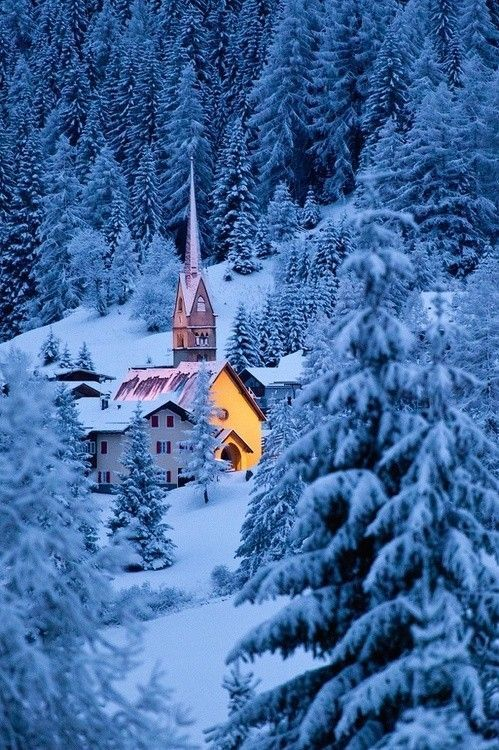<3 Snow Forest, The Dolomites, Italy | Winter Landscapes