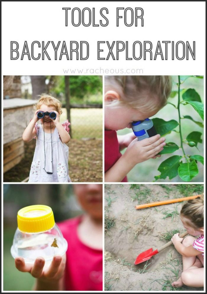 Tools for Backyard Exploration!