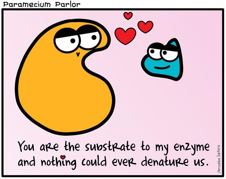 2840 best Biology images on Pinterest | Ap biology ...