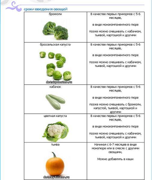Вопрос про прикорм:) - Babyblog.ru