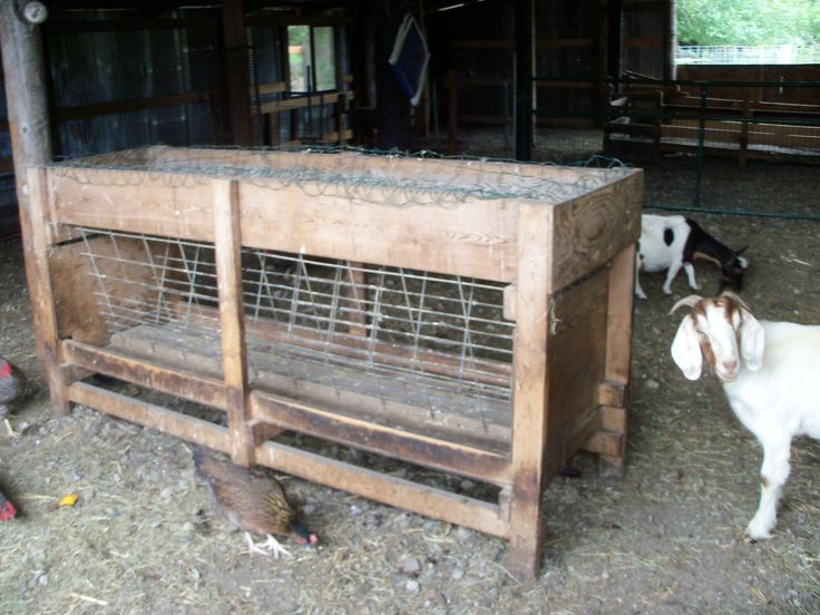 Ivermectin For Goats How Often
