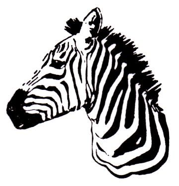 Zebra Silhouette Google Search Silhouette Pinterest