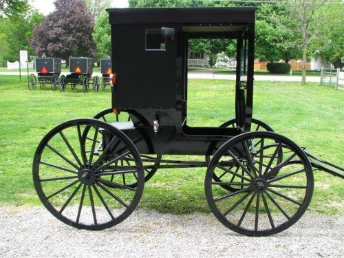 20 best images about horse buggy wagons on pinterest for Easy entry cart plans