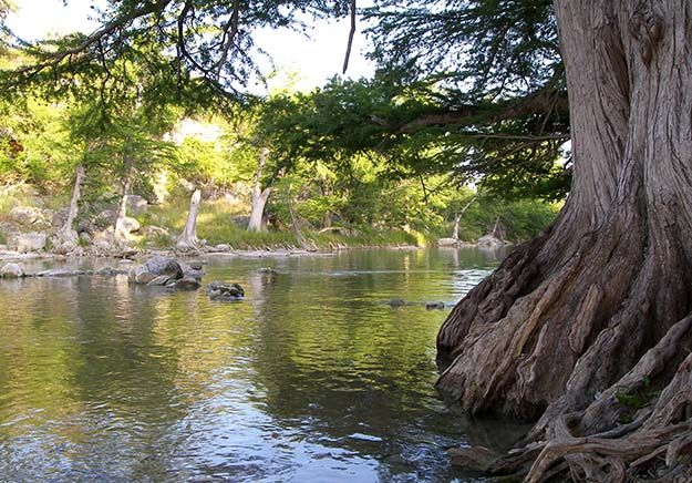 Guadalupe River State Park – Spring Branch | Have a Big Time at the Best Campgrounds in Texas | Fun and Beautiful Spots To Camp by Survival Life at http://survivallife.com/have-a-big-time-at-the-best-campgrounds-in-texas/