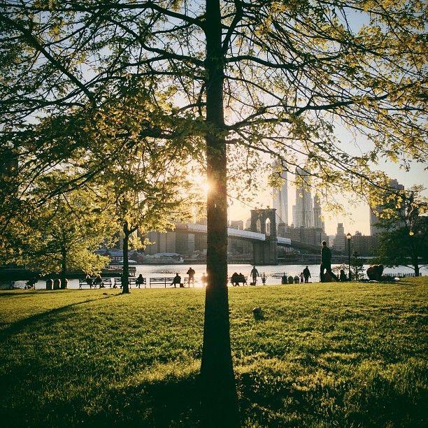 DUMBO, Brooklyn Bridge Park, picnic on the park, Brooklyn, NYC, New York, Manhattan skyline